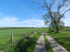 Long Shadows, Essich, May 2019 (allanmaciver) Tags: long shadows essich inverness tracks fence trees green fertlie height blue sky weather allanamciver allanmaciver