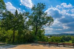 from skp-mm (skp-mm) Tags: 24mm badcannstatt balu baum green grün himmel kurpark park skyblaublue sommer sony wolken stuttgart badenwürttemberg deutschland