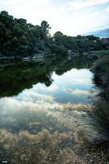 Reflejos (candi...) Tags: reflejos agua naturaleza nature airelibre cielo nubes arboles sonya77ii