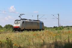 LINEAS 186 446-1, Graben (michaelgoll777) Tags: lineas br186 traxx railpool