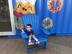 Halifax Waterfront (brownpau) Tags: iphonex canada novascotia halifax halifaxharbour waterfront ezra ezraordo chair adirondackchair