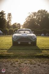 Aston Martin DB4 GTZ (GPE-AUTO) Tags: chantilly artsetelégance art elégance concours grass garden sunset sun sol soleil jardin chateau castle castillo race car racecar aston martin bd4 gtz astonmartindb4 db4gtz zagato legacy