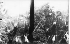 Queen's West Surrey in stereo B (kterkan) Tags: instantograph glassplate rolleiblackmagic alternativephotography antiquecamera thorntonpickard stereoscope stereoscopic
