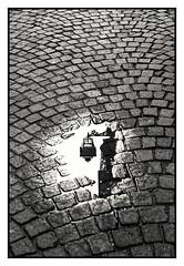 Lampadaire dans une rue de Cuneo Italia (freephysique) Tags: noir et blanc rue lampadaire pavés reflet cuneo italie nikon d750 morin ganet ambiance black white street floor lamp cobbles reflection italy ambience schwarz und weis strase stehleuchte pflasterung reflexion italien ambiente 黑色和白色 街头 落地灯 鹅卵石 反射 库尼奥 意大利 气氛 en blanco y negro calle lámpara de pie adoquines reflexión italia bianco e nero strada lampada da terra ciottoli riflessione черный и белый улица торшер брусчатка отражение кунео италия атмосфера