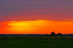 DSC03376 (Argstatter) Tags: abendstimmung natur sonnenuntergang landschaft landscape blockland bremen