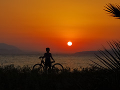 greek_summer_3_the_kid_with_the_bicycle (athanecon) Tags: sun sky colours colores colors alimos marina marine greece athens summer summer2019 yauchts boats water ocaso puestadesol puestadelsol sol cielo ciel soleil mer mere coucherdusoleil coucherdesoleil tramonto masts piraeus castela castella pireas faliron faliro grece grecia verano reflection reflections fishing fisherman summeringreece flickr nikon gull gazing lighthouse kid bicycle huawei huaweip20 huaweip20pro