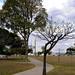 Imagens de Brasília - Esplanada dos Ministérios
