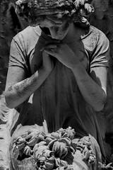 Genova, Cimitero di Pra' Palmaro (Sven Kapunkt) Tags: friedhof friedhöfe cemetery cemeteries cimetière campo cimitero certosa camposanto italia italien italy ligurien liguria gräber grab graveyard grabmal gothic grabstätte genova genua statue angel engel