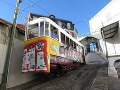 Carris_Cable_car_Lavra_Lisbon_tram_Portugal (7) (OOMYV) Tags: cablecar carris lisbon oomyv201709 pt portugal tram overseas railroad railway train ●海外 ケーブルカー トラム ポルトガル ポルトガルの鉄道 リスボン 列車 海外 路面電車 鉄道 リスボン地域