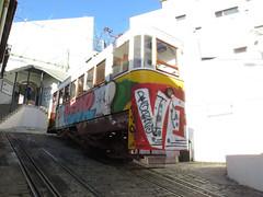 Carris_Cable_car_Lavra_Lisbon_tram_Portugal (10) (OOMYV) Tags: portugal lisbon cablecar pt carris oomyv201709 railroad train tram railway overseas 鉄道 列車 海外 ケーブルカー 路面電車 トラム ポルトガル リスボン ポルトガルの鉄道 リスボン地域 ●海外