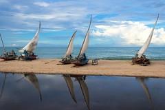Jangadas - Antonio Marin Jr (Antonio Marin Jr) Tags: jangadas reflexos praia paisagem mar canon80d canon ceará beberibeceará travel brasil litoral