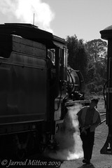 Driver's Walk Around (Mittens_97) Tags: mary valley rattler c17 974 maryvalleyrattler c17974 steamtrain steam locomotive loco steamlocomotive trains railway railroad rail queensland qld