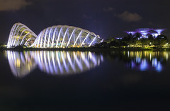 Garden by the bay (Singapur) (U2iano) Tags: garden bay jardin gardenbythebay singapur singapore forest cloud flowers grove supertree supertreesgrove reflejo reflejos reflection bahia sudeste asia asiatico noche lights lightsnight