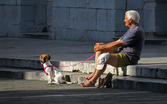 In sunlight with his puppy - Lucca, Italy (TravelsWithDan) Tags: candid man dog sunlight church city urban lucca tuscany italy canong3x