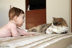 Meeting (Luca Bobbiesi) Tags: baby child children neonato bambino figlio son cat neko gatto chat portrait ritratto canoneos5dmarkiv canonef24105mmf4lisusm
