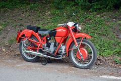 Moto Guzzi Airone 250 (Maurizio Boi) Tags: moto motorcycle motorbike old classic vintage vecchio antique italy motoguzzi 250 airone