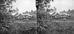 Papa's hunting lodge? (National Library of Ireland on The Commons) Tags: thestereopairsphotographcollection lawrencecollection stereographicnegatives jamessimonton frederickhollandmares johnfortunelawrence williammervynlawrence nationallibraryofireland huntinglodge thatchedroof ladder forestry