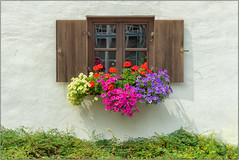 Happy Window Wednesday! (Janos Kertesz) Tags: window house architecture flower wall green red summer old glass home decoration building facade wood buchendorf bavaria bayern