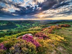 Lucky break (Stephen Elliott Photography) Tags: peakdistrict derbyshire hopevalley hathersage millstone edge summer sunset heather olympus em1 714mm kase filters