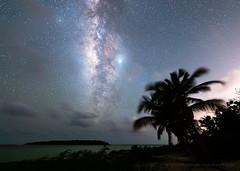 The Milky Way from Vieques (josefrancisco.salgado) Tags: 14mmf18dghsmart 2470mmf28g antillasmayores astronomy atlanticocean caribbeansea d5 greaterantilles islachiva lavíaláctea marcaribe nikkor nikon océanoatlántico puertorico sigma themilkyway vieques westindies astrofotografía astronomía astrophotography beach cielonocturno estrellas flora mar night nightsky ocean océano palmtree palma palmera playa sea stars