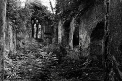 The ruin of an abandoned Church. (Hidden in the flash.) Tags: blackandwhite bw mono monochrome nikon nikkor d3400 nikond3400 church chapel ruin abandoned derelict norfolk england uk countryside decay nature rural unitedkingdom