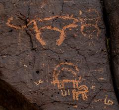 ancient rock art - wadi hassan, N of Azraq, Jordan 2 (Russell Scott Images) Tags: black basalt stony desert azraq jordan ancient rock art petroglyphs wadi hassan