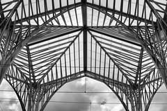 Estação do Oriente (H&T PhotoWalks) Tags: roof construction contemporary architecture calatrava station estação parquedasnações lisboa lisbon portugal blackwhite blackandwhite bw nik silverefexpro2 geometry canoneos350d canon28135 railway train