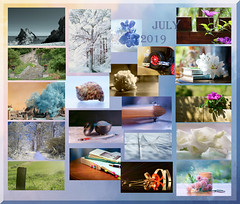 as July melts into August .... (Elisafox22) Tags: elisafox22 july 2019 collage snapshot images summary thumbnails border bowfiddlerock leaves flowers gladioli roses chryasnthemums moongate infrared leithhall monochrome carnation landscape sunshine trees toycar glass abstract macro paper fan seashore bench fyvie sky clouds fences outdoor indoor stilllife blackandwhite postprocessing banff kirkyard medievalkirkyard lily white black sepia pink red blue seashell hydrangea aberdeenshire scotland elisaliddell©2019