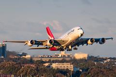 VH-OQL QANTAS Airbus A380-842 RWY 25 Sydney Airport SYD/YSSY 13/7/2019 (TonyJ86) Tags: vhoql qantas qfqfa airbus a380 a388 a380800 a380842 superjumbo widebody quadjet aircraft aviation airliner airplane aeroplane plane passenger jet jetliner jetaircraft jetplane passengerplane passengerjet international departure takeoff rotate flight fly airport syd yssy sydneyairport sydneykingsfordsmith sydney nsw newsouthwales australia planespotting avporn aviationporn avgeek travel nikon d750 nikond750 vehicle outdoor aviationphotography tamronsp150600mmf563divcusdg2 tamron airtravel goldenhour flyingkangaroo