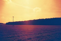 Landschaft (MrMexX) Tags: redscale exa1b analoge