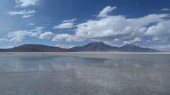 Salar de Surire. Región de Arica y Parinacota.  Altiplano Chile. (Merar1) Tags: nortedechile salardesurire salar chile regióndearicayparinacota