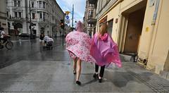 city flowers after storm (rafasmm) Tags: łódź lodz poland polska europe street streetphoto streetlife streets streetphotography streetscene color flowers people outdoor after storm nikon d90 sigma 1020 ex walk girl