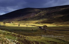 Highlands, landscape (blauepics) Tags: europe great britain scotland schottland scottish highlands schottisches hochland landscape landschaft pastoral nature natur rural ländlich clouds wolken green grün valley tal meadows wiese hills hügel mountains berge 1995 uk contrasts light licht kontraste