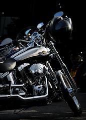 Some Bikes are just so damn Cool.. (Harleynik Rides Again.) Tags: deuce 100th anniversary harleydavidson harleynikridesagain
