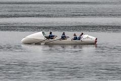 HMS Oardacious, MMSI 232023106; Loch Long, Firth of Clyde, Scotland (Michael Leek Photography) Tags: boat ship vessel rowingboat workingboat workboat atlantic atlanticcrossing northatlantic atlanticocean rn royalnavy britainsarmedforces britainsnavy hmnbclyde hmnb hmsneptune firthofclyde clyde lochlong faslane submarine submarineservice westcoastofscotland westernscotland cowal cowalpeninsula argyllandbute argyll ardentinny talisker taliskerwhisky taliskerwhiskychallenge row rowing hms hmsoardacious oardacious michaelleek michaelleekphotography