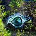 The eye of Loki