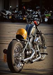 FTW.. (Harleynik Rides Again.) Tags: attitudecustoms chopper harleydavidson bike moto motorcycle goldenhour harleynikridesagain