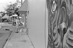 Paws on the Ave (macromary) Tags: analog florida foma fomapan fomapan100 blackwhite analogphotograph bw blackandwhitefilm filmcamera film mechanicalcamera vintage vintagecamera rodinal 35mm nikkor 50mm 50mmlens 35mmfilm f14 nikonf100 f100 nikon monotone fl lakeworth palmbeachcounty molly dog petstore petshop labrador streetart mural yellowlab