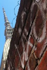 The Wall... In Turin. (giuselogra) Tags: thewall torino turin piedmont piemonte italy italia moleantonelliana city città lacittàmetropolitanaditorinovistadavoi