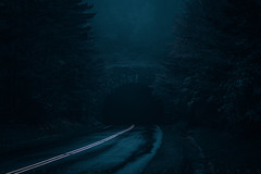 Night Moods (johanhakanssonphotography) Tags: blueridgemountains blueridgeparkway weather storm wet dark night mood moodyspooky light travel northcarolina westernnorthcarolina southernappalachians nikon johanhakanssonphotography blue subdued scenic hemlock trees road