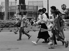 Vente de fleurs de lotus, Phnom Penh, Cambodge, juillet 2019. Selling lotus flowers, Phnom Penh, Cambodia, July 2019. (vdareau) Tags: blackandwhitephotography photographienoiretblanc noiretblanc blackandwhite photographiederue streetphotography lotus fleur flower phnompenh cambodia cambodge asiedusudest southeastasia asie asia flickrunitedaward