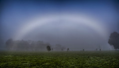 Fogbow at Stewarton (Rene52) Tags: fog frost fogbow fields stewarton victoria weather