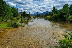 Canmore River Landscape (Bracus Triticum) Tags: canmore river landscape キャンモア アルバータ州 alberta canada カナダ 7月 七月 文月 shichigatsu fumizuki bookmonth 2019 reiwa summer july