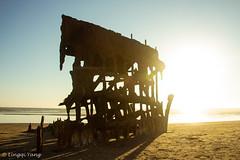 IMG_0816 (nickyang_07) Tags: wreck peter iredale astoria oregon sink ship