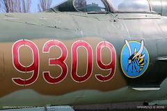 MiG-21 MF (srkirad) Tags: aircraft airplane jet military mikoyan gurevich mig mig21mf fishbed noseart badge serial closeup reptar aviationmuseum aviation museum hungary hungarian russian szolnok