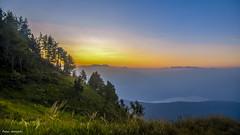 sunrise above the lake (peter-goettlich) Tags: sunrise nature landscape lake mountains clouds sun sonnenaufgang natur landschaft see berge wolken sonne nebel fog outside outdoor italy trentino valsugano italien italia