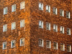 24 sad hospital windows (ainz1607) Tags: sad crying buildings abstract minimal orange 24 architecture bricks windows london guys hospital