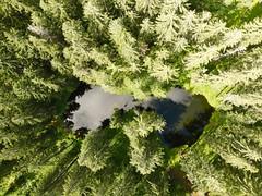 Wildschönau - Bemberger Lacke (Hans Baumann - Wildschönau) Tags: wildschönau alpen alpin urlaub oberau niederau auffach thierbach alm gebirge kitzbüheler schieferalpen skijuwel