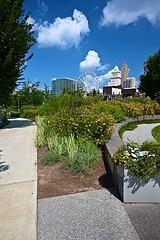 The Banks in Cincinnati (durand clark) Tags: park flowers thebanks cincinnati carewtower centraltrustbuilding ohio zeiss18mmf35 nikonz6mirrorless lines texture clouds ferriswheel