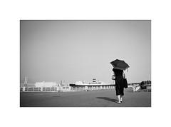 *August. (niko**) Tags: leicam2 elmarit28mmf28 fujifilm neopan100acros 135 35mm filmphotography yokohama leica